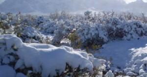 pukarainca_mountain_lodge_uspallata_1